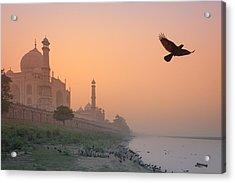 Misty Taj Mahal Acrylic Print