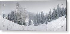 Misty Winter Panorama Acrylic Print