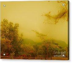 Misty Yellow Hue- El Valle De Anton Acrylic Print