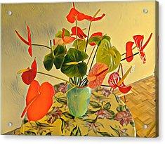 Mixed Aloha Anthuriums Matisse Acrylic Print