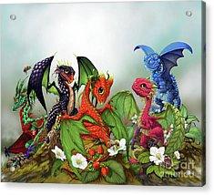 Mixed Berries Dragons Acrylic Print