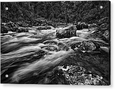 Mixed Emotions Acrylic Print by Mark Lucey