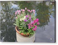 Mixed Flower Planter Acrylic Print