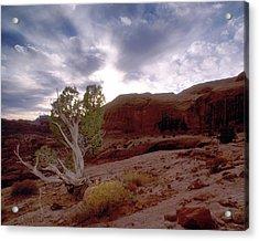 Moab Dreams Acrylic Print by Kim Blumenstein