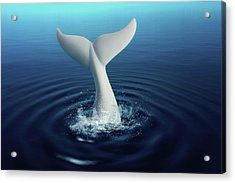 Moby Dick Acrylic Print by Tom Mc Nemar