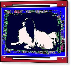 Mod Dog Acrylic Print by Kathleen Sepulveda