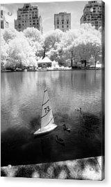 Acrylic Print featuring the photograph Model Boat Lake Central Park by Dave Beckerman