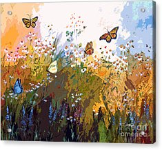 Modern Chamomille And Butterflies Acrylic Print