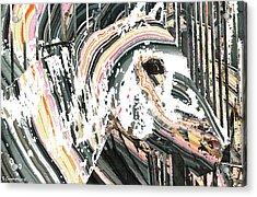 Modern Horse Art By Sharon Cummings Acrylic Print