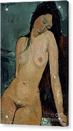 Modigliani: Nude, C1917 Acrylic Print by Granger