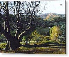 Moel Famau From Loggerheads Acrylic Print by Harry Robertson