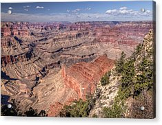 Acrylic Print featuring the photograph Mohave by John Gilbert