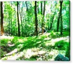 Acrylic Print featuring the photograph Mohegan Lake Forever Green by Derek Gedney