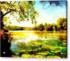 Acrylic Print featuring the painting Mohegan Lake Hidden Oasis by Derek Gedney
