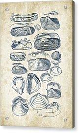 Mollusks - 1842 - 03 Acrylic Print