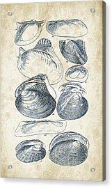 Mollusks - 1842 - 08 Acrylic Print