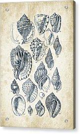 Mollusks - 1842 - 19 Acrylic Print