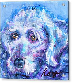 Molly Blue Acrylic Print