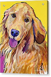 Molly Acrylic Print by Pat Saunders-White