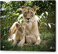 Mom And Baby Acrylic Print by Cheri McEachin