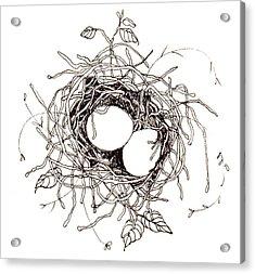 Moms Nest Acrylic Print by Deborah Wetschensky