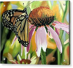 Monarch Acrylic Print by Kenneth Young