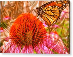 Monarch Mirage Acrylic Print