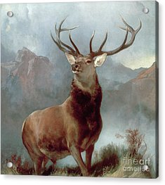 Monarch Of The Glen Acrylic Print by Sir Edwin Landseer
