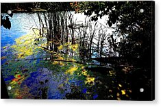 Monet Ice Age Pond Acrylic Print