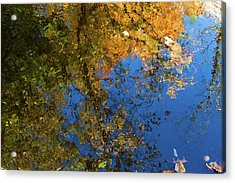 Acrylic Print featuring the photograph Monet's Autumn Pool by Lon Dittrick