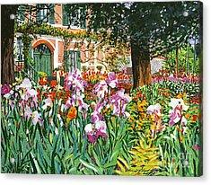 Monet's Irises Acrylic Print by David Lloyd Glover