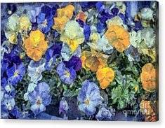 Monet's Pansies Acrylic Print