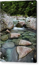 Monkey Creek Acrylic Print by Claire Walsh