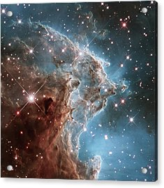 Acrylic Print featuring the photograph Monkey Head Nebula by Marco Oliveira