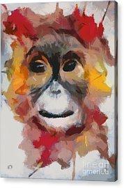 Monkey Splat Acrylic Print
