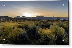 Mono Lake Sunset Acrylic Print by K Pegg