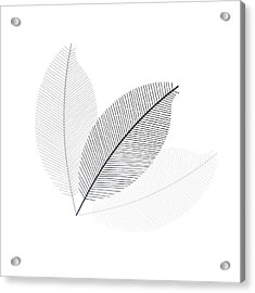 Monochrome Leaves Acrylic Print
