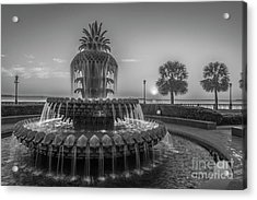 Monochrome Pineapple Acrylic Print