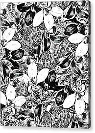 Monochrome Acrylic Print by Uma Gokhale