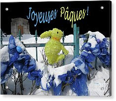 Monsieur Lapin Dit Acrylic Print by Dominique Fortier