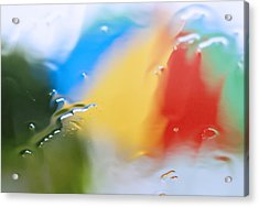 Monsoon Acrylic Print by Pramod Bansode
