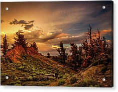 Monsoon Skies Over The Whites Acrylic Print by Dan Holmes