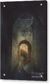 Monster In Paris Acrylic Print by Mythja Photography