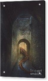 Monster In Paris Acrylic Print