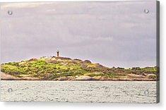 Montague Island - Nsw - Australia Acrylic Print by Steven Ralser