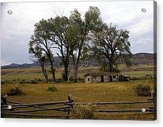 Montana Homestead Acrylic Print by Marty Koch