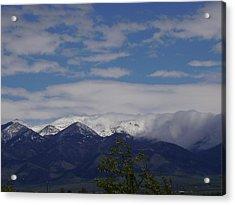 Montana June Acrylic Print by Yvette Pichette