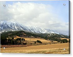 Montana Mountains Acrylic Print by Lynn Bawden