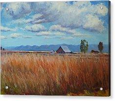 Montana Prairie In The Fall Acrylic Print by Bonita Waitl