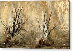 Montana Rock Wall Acrylic Print
